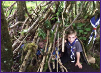 beavers den building